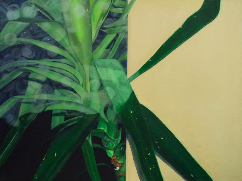 Pflanze, 2001, Öl auf Leinwand 90 x 120 cm von Andrea Eitel